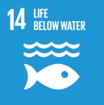Life Below Water - sdg 14 - social impact israel