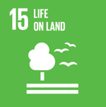 life on land natural environment - SDG 15 - Social Impact Israel