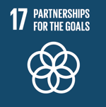 partnership for the global goals - SDG 17 - Social Impact Israel