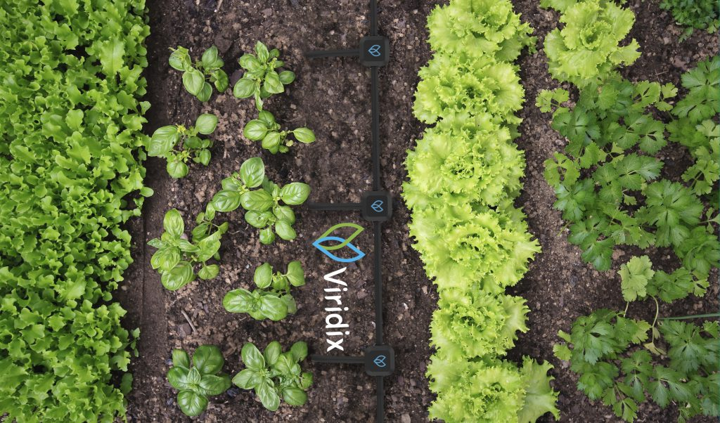 Viridix - Precision Irrigation from the Ground Up - SDG 2 - Social Impact Israel