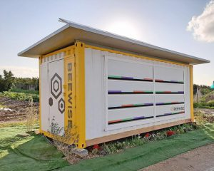 Beewise - Redesigning sustainable beehives, for the 21st century -SDG 15 - Social Impact Israel